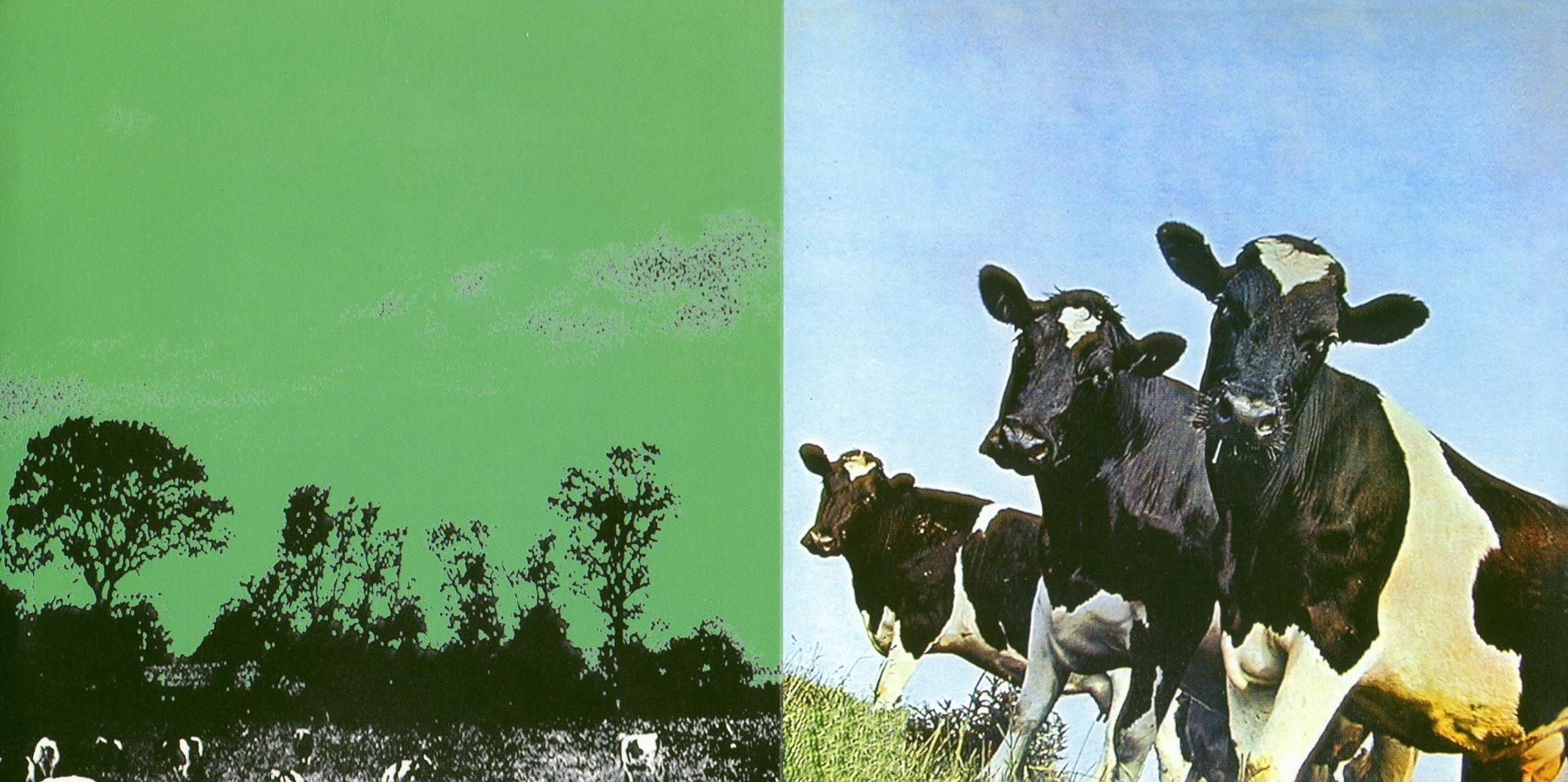 1970-atom_heart_mother_collector_dfp-book